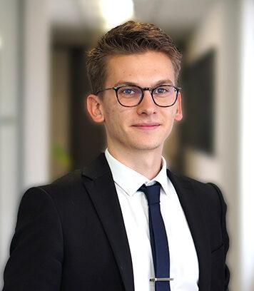 Pleney Lucas Consultant Paris